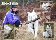 camilla_og_hedda