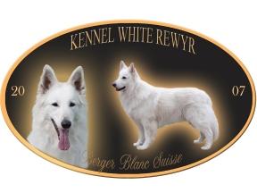 White Rewyr-Logo